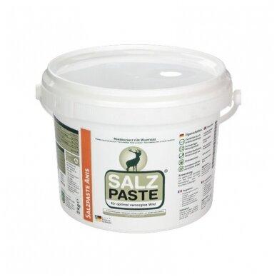 Tepama SALZ PASTE druska įvairių kvapų 2kg. 6