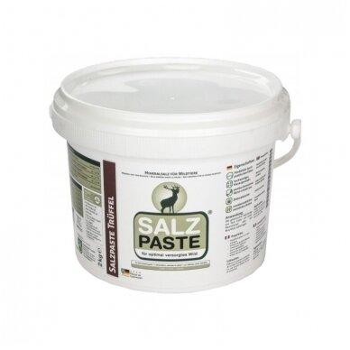 Tepama SALZ PASTE druska įvairių kvapų 2kg. 4