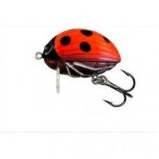 Salmo Lil Bug 2 Ladybird